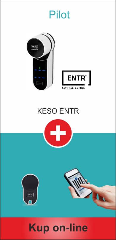 zestaw-pilot_teleon-Elektroniczny Zamek